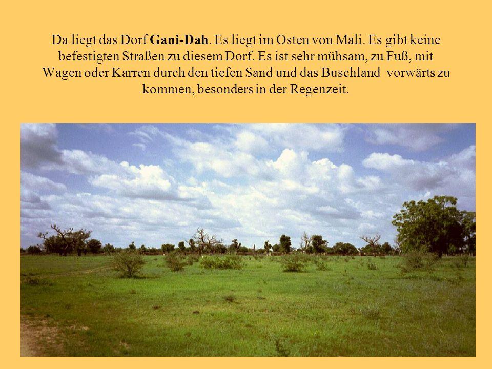 Da liegt das Dorf Gani-Dah. Es liegt im Osten von Mali