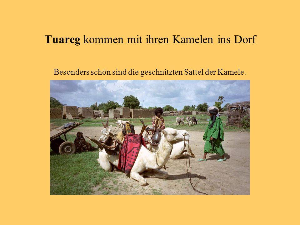 Tuareg kommen mit ihren Kamelen ins Dorf