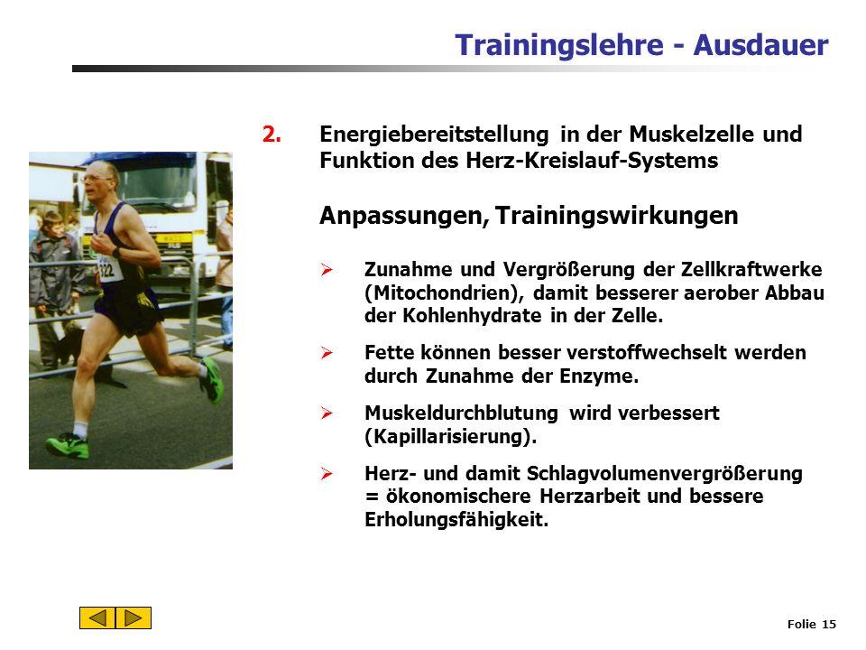 Anpassungen, Trainingswirkungen