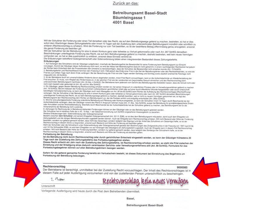 S. Muster Rechtsvorschlag, kein neues Vermögen