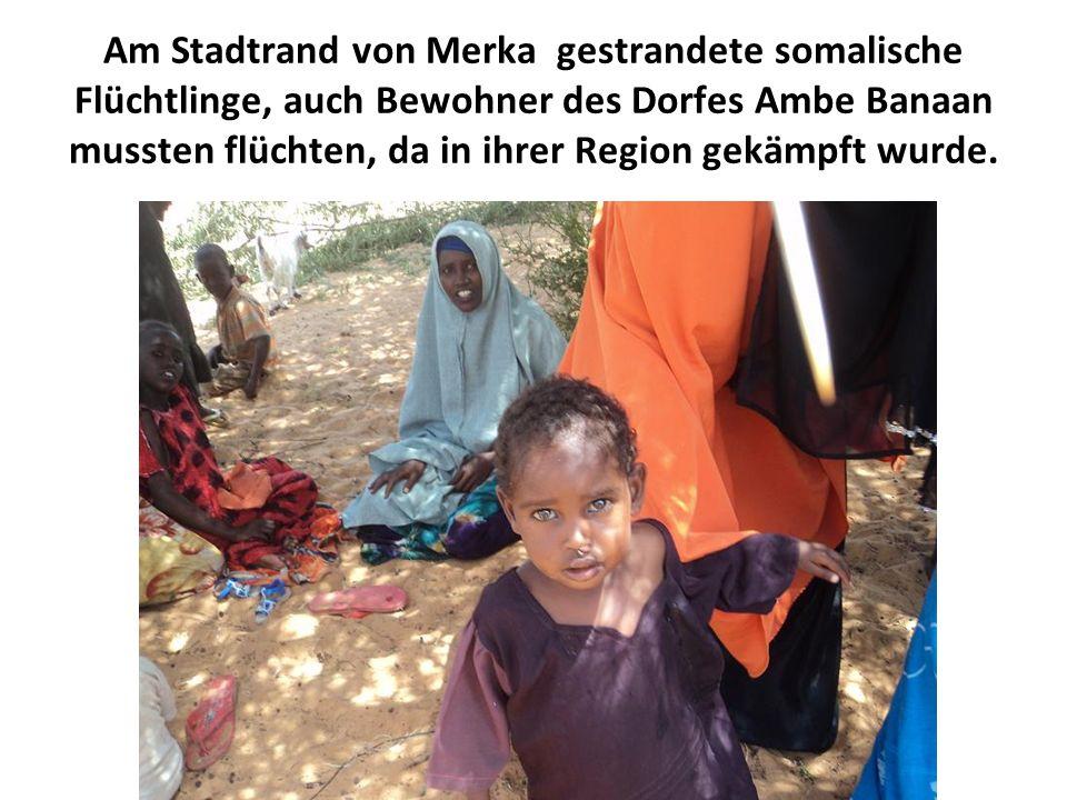 Am Stadtrand von Merka gestrandete somalische Flüchtlinge, auch Bewohner des Dorfes Ambe Banaan mussten flüchten, da in ihrer Region gekämpft wurde.