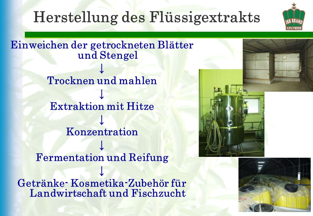 Herstellung des Flüssigextrakts