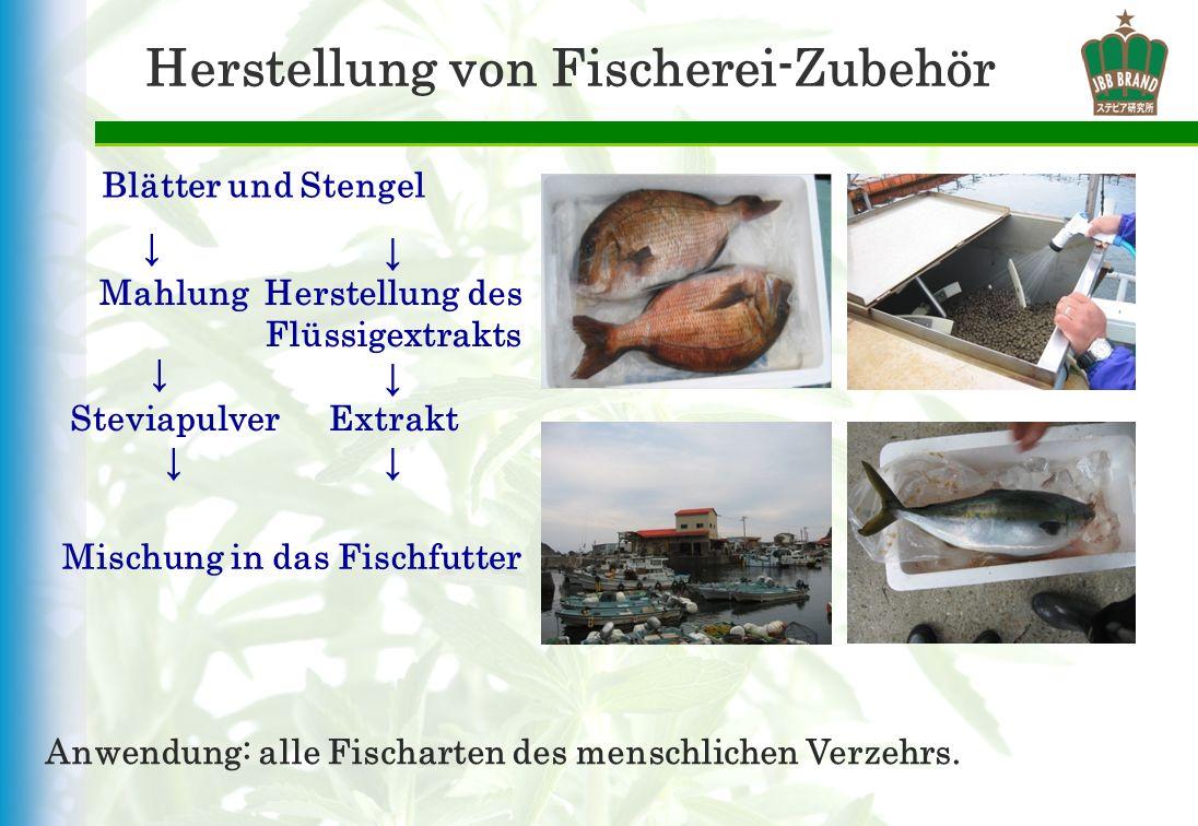 Herstellung von Fischerei-Zubehör