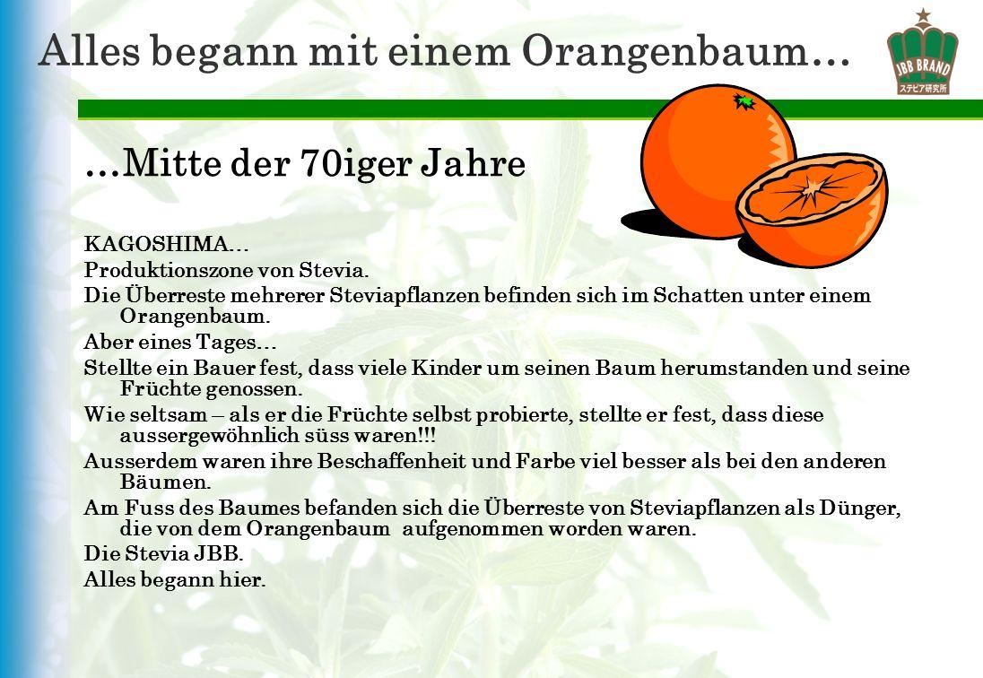 Alles begann mit einem Orangenbaum…