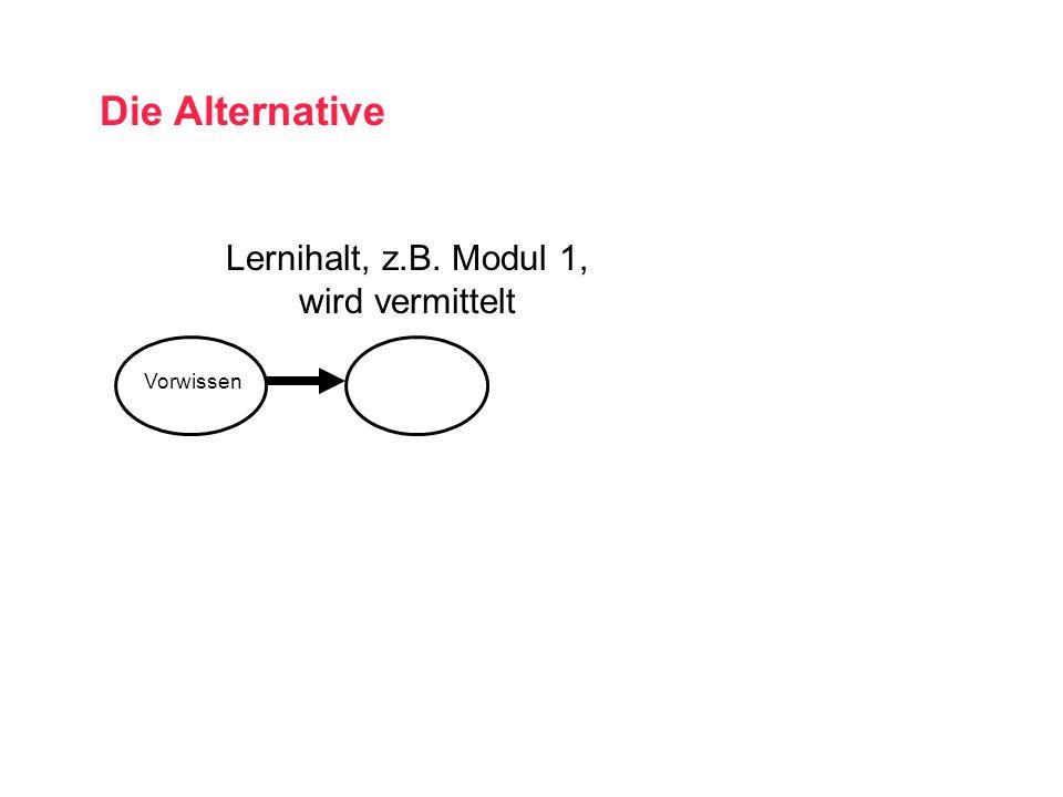 Lernihalt, z.B. Modul 1, wird vermittelt