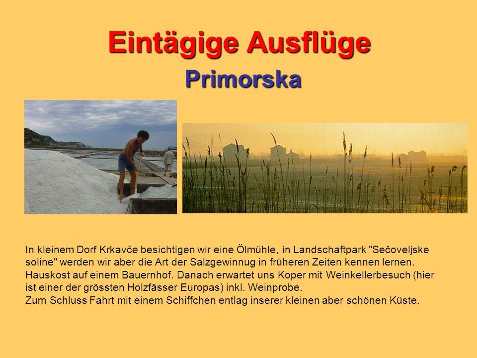 Eintägige Ausflüge Primorska