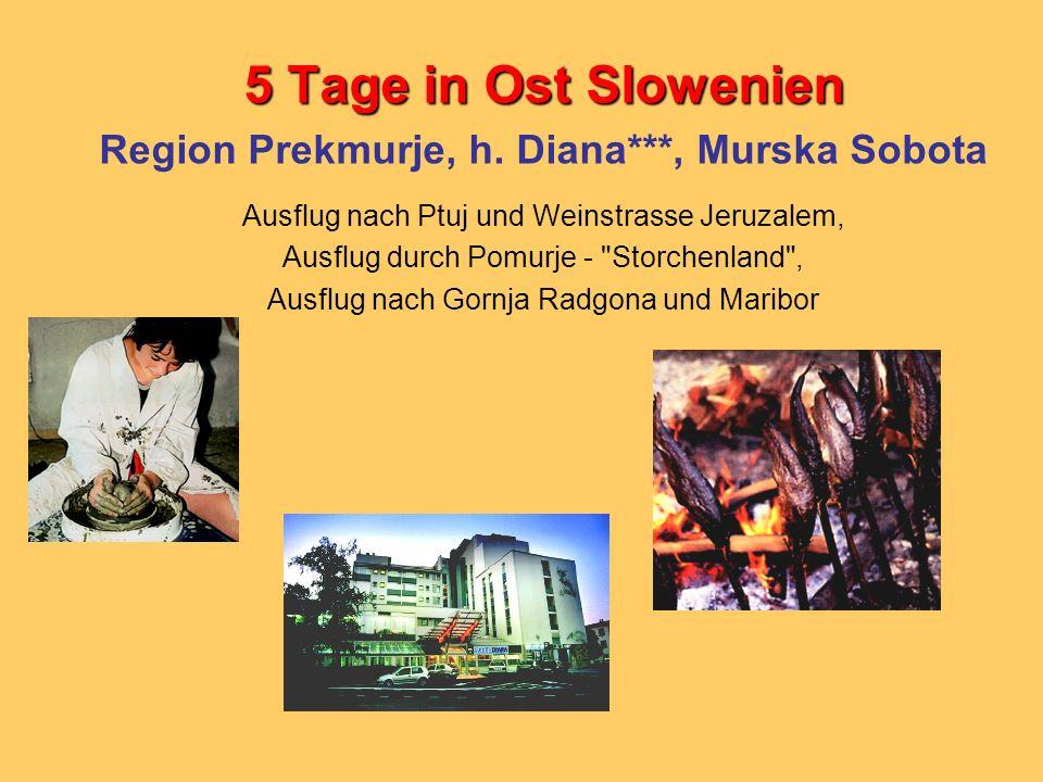 Region Prekmurje, h. Diana***, Murska Sobota
