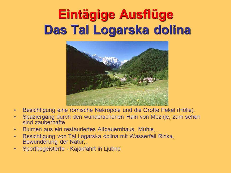 Eintägige Ausflüge Das Tal Logarska dolina