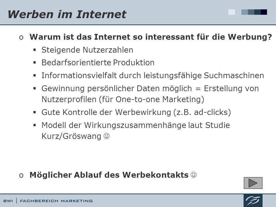 Werben im Internet Warum ist das Internet so interessant für die Werbung Steigende Nutzerzahlen. Bedarfsorientierte Produktion.