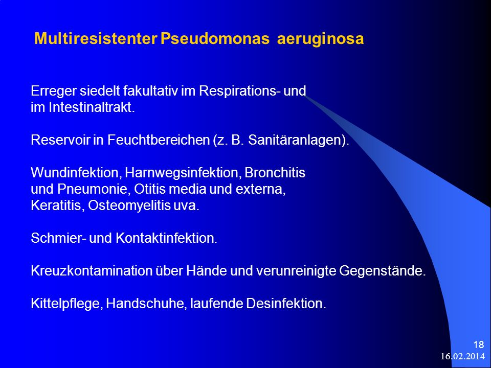 Multiresistenter Pseudomonas aeruginosa