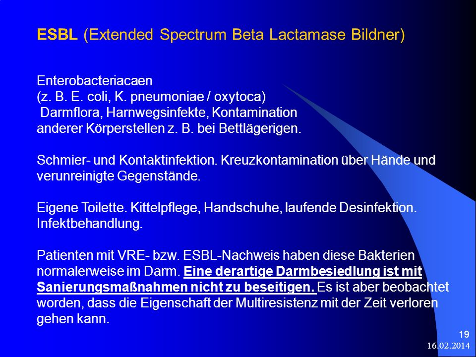 ESBL (Extended Spectrum Beta Lactamase Bildner)
