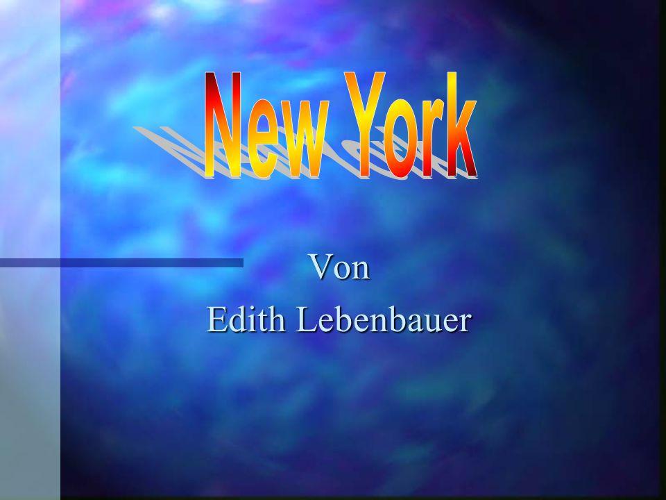 New York Von Edith Lebenbauer