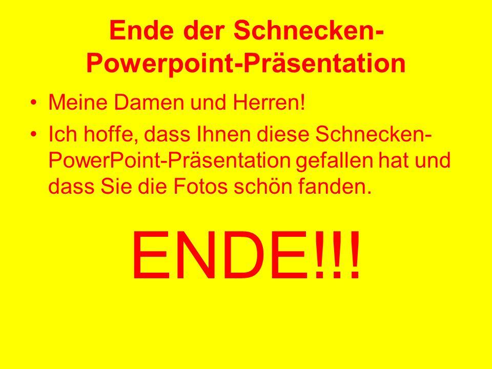 Ende der Schnecken-Powerpoint-Präsentation