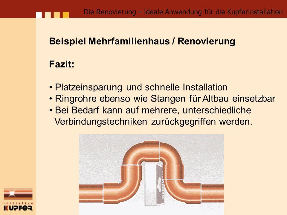 Beispiel Mehrfamilienhaus / Renovierung Fazit: