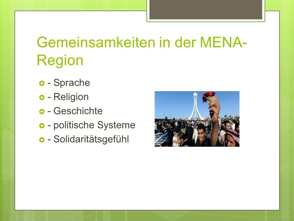 Gemeinsamkeiten in der MENA-Region
