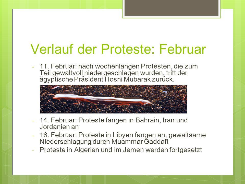 Verlauf der Proteste: Februar