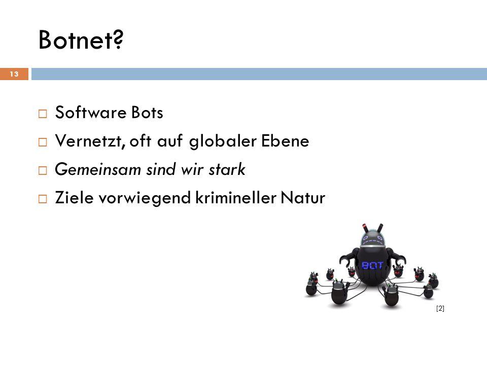 Botnet Software Bots Vernetzt, oft auf globaler Ebene