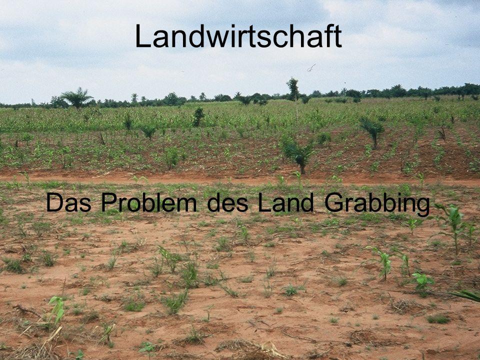 Das Problem des Land Grabbing