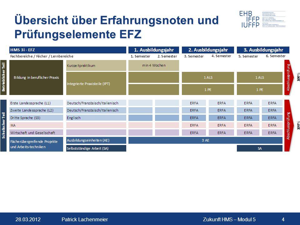Übersicht über Erfahrungsnoten und Prüfungselemente EFZ