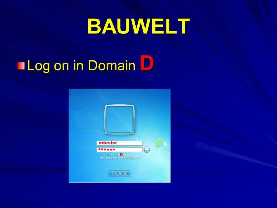 BAUWELT Log on in Domain D