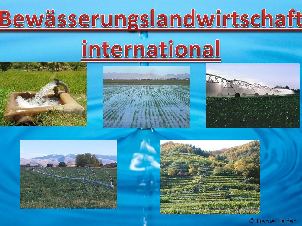 Bewässerungslandwirtschaft international