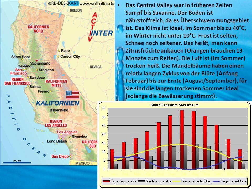 Das Central Valley war in früheren Zeiten Sumpf bis Savanne