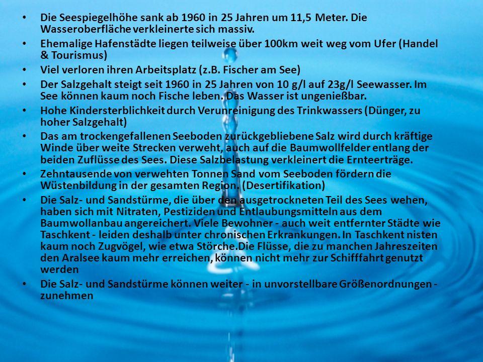 Die Seespiegelhöhe sank ab 1960 in 25 Jahren um 11,5 Meter