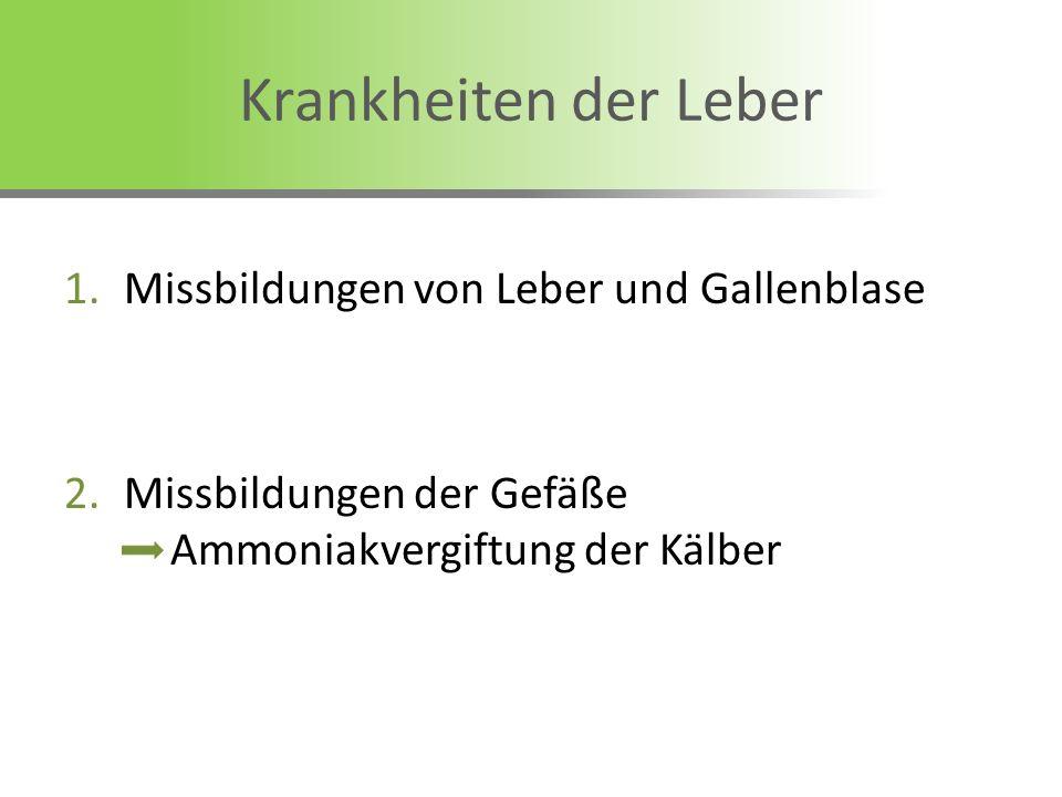 Krankheiten der Leber Missbildungen von Leber und Gallenblase