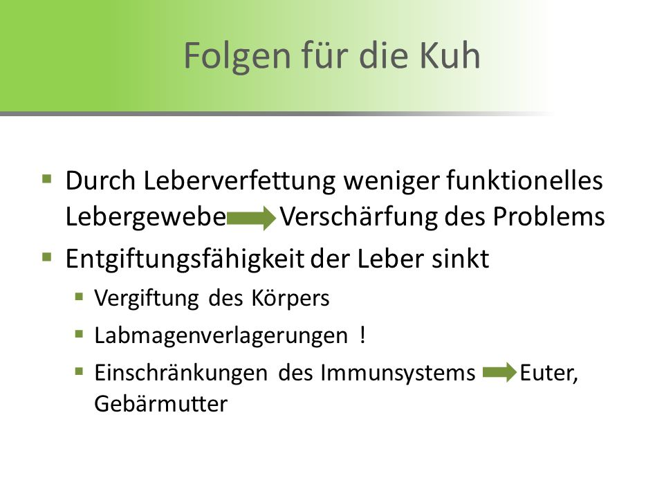Folgen für die Kuh Durch Leberverfettung weniger funktionelles Lebergewebe Verschärfung des Problems.