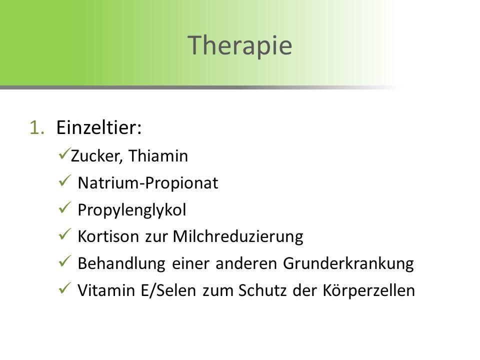Therapie Einzeltier: Zucker, Thiamin Natrium-Propionat Propylenglykol