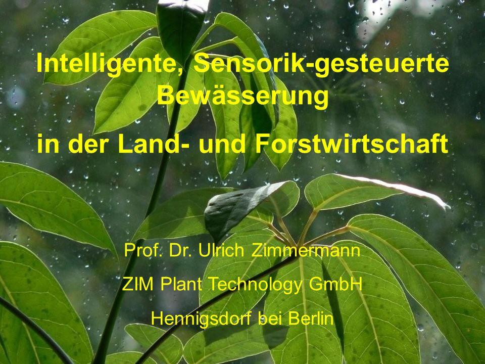 Intelligente, Sensorik-gesteuerte Bewässerung