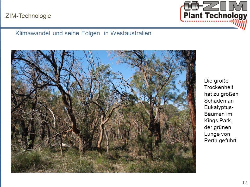 Klimawandel und seine Folgen in Westaustralien.