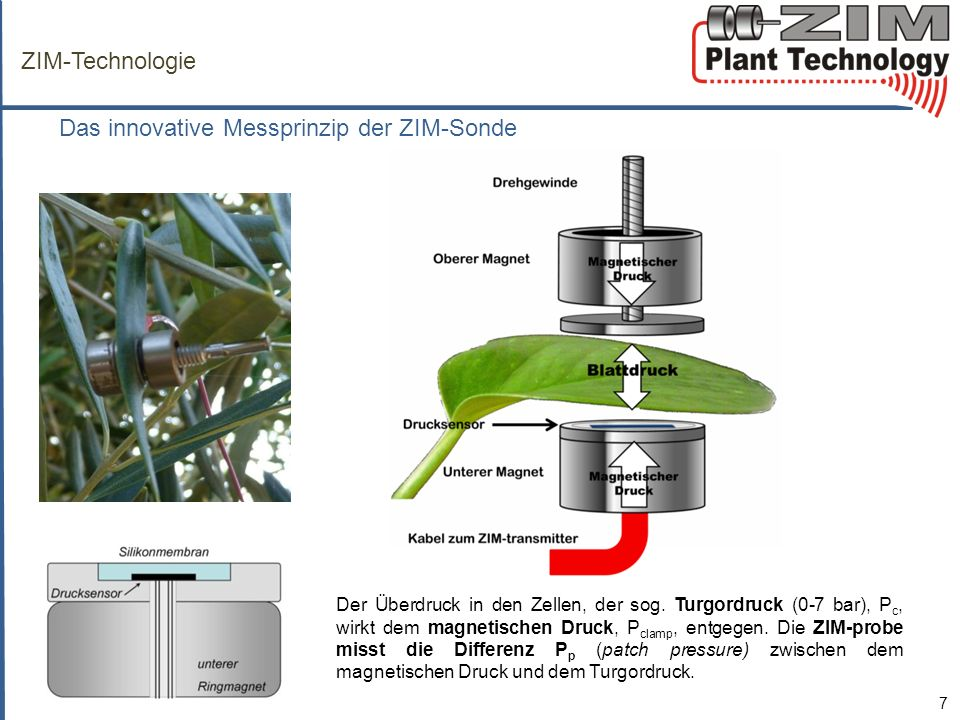 Das innovative Messprinzip der ZIM-Sonde
