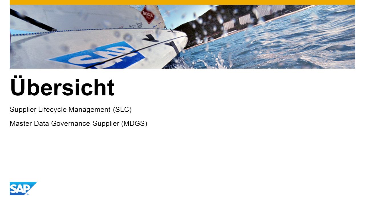 Übersicht Supplier Lifecycle Management (SLC)
