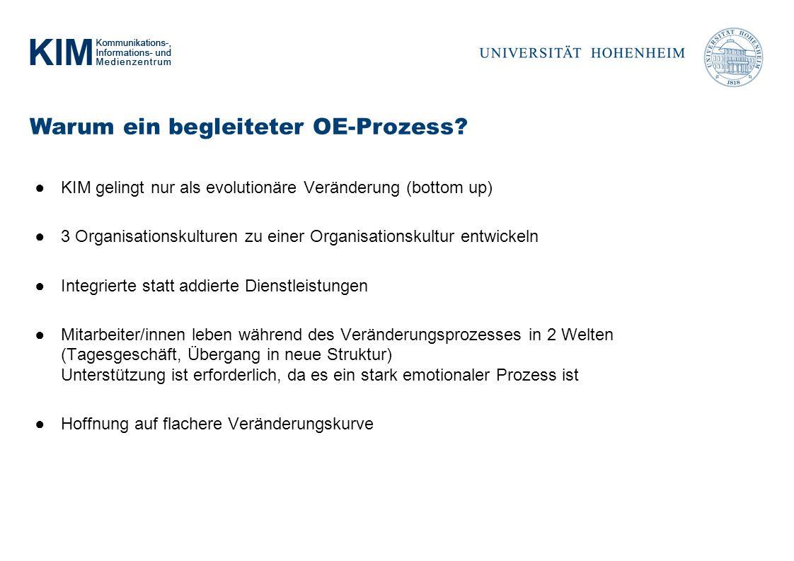 Warum ein begleiteter OE-Prozess