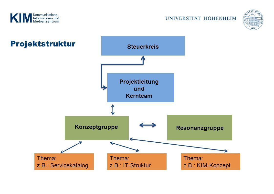 Projektstruktur Resonanzgruppe Steuerkreis Konzeptgruppe