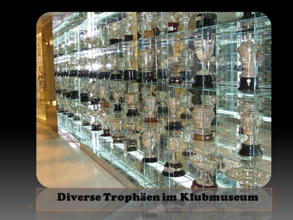 . Diverse Trophäen im Klubmuseum