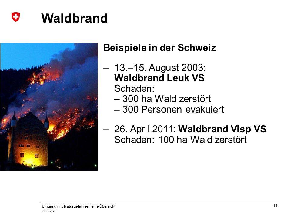 Waldbrand Beispiele in der Schweiz