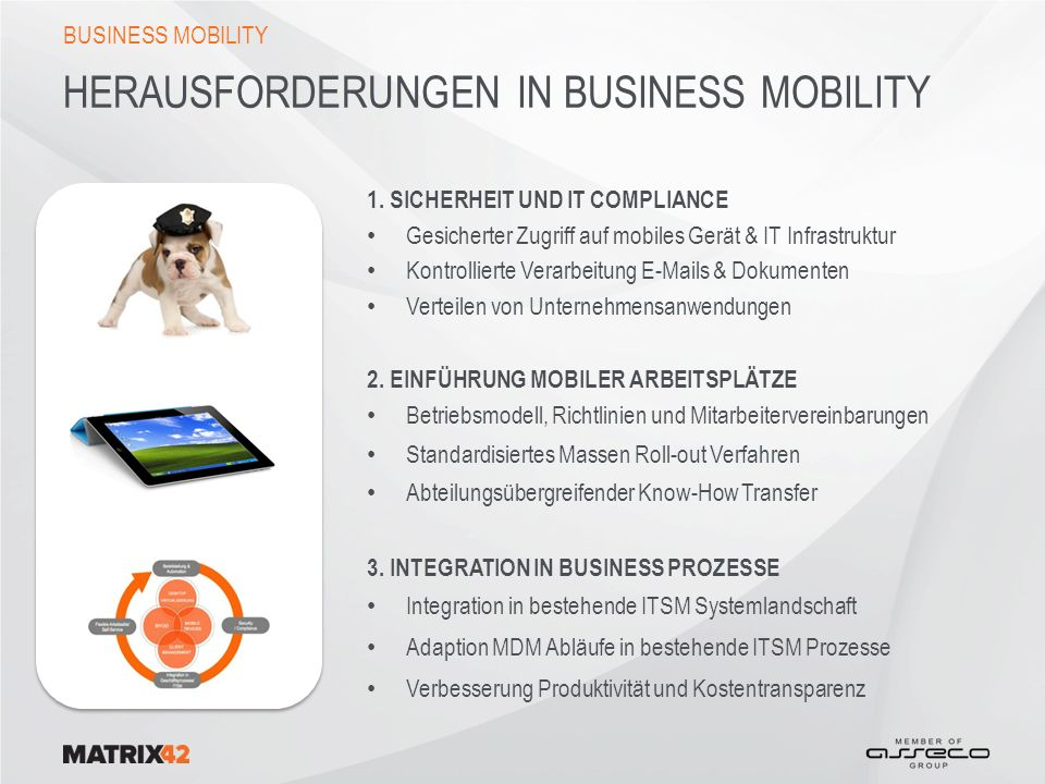 HERAUSFORDERUNGEN in BUSINESS MOBILITY