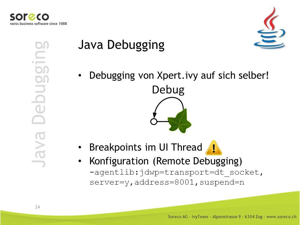 Java Debugging Java Debugging Debugging von Xpert.ivy auf sich selber!