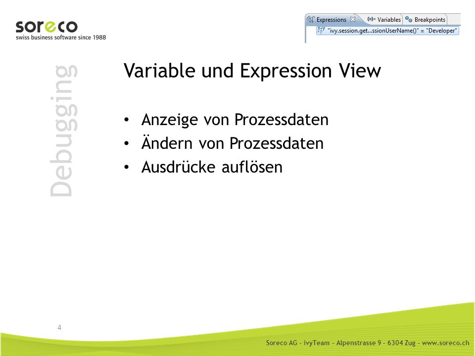 Variable und Expression View