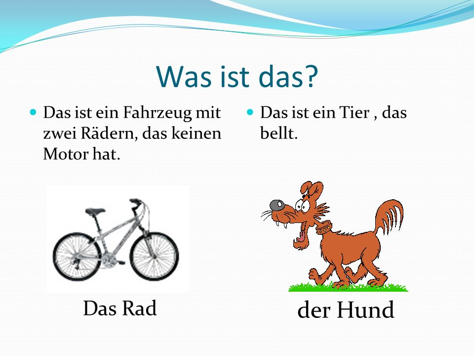 Was ist das der Hund Das Rad