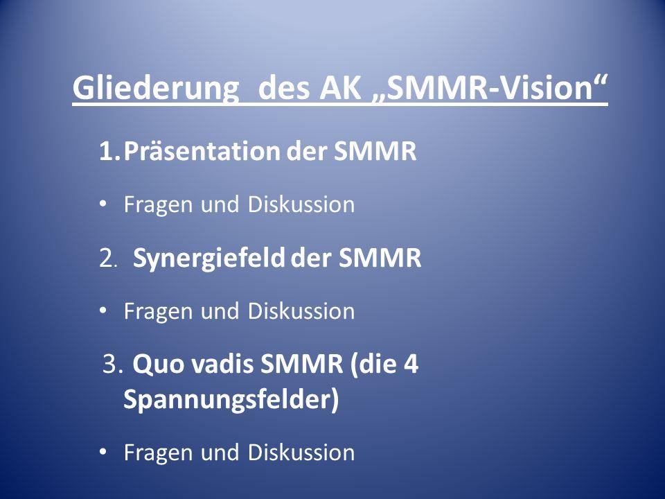 """Gliederung des AK """"SMMR-Vision"""