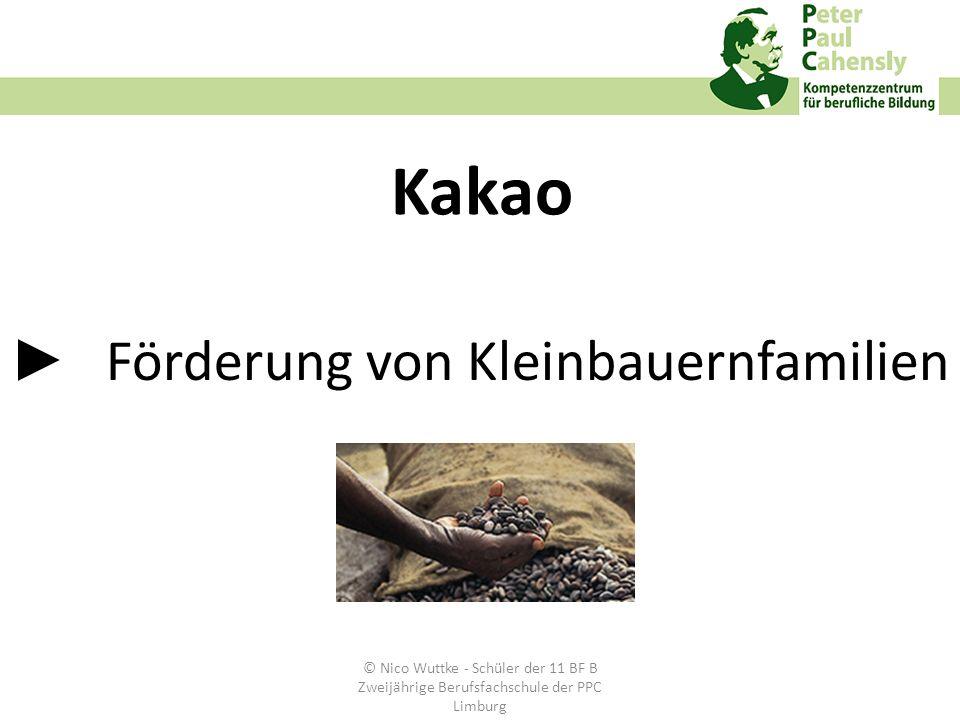 ► Förderung von Kleinbauernfamilien