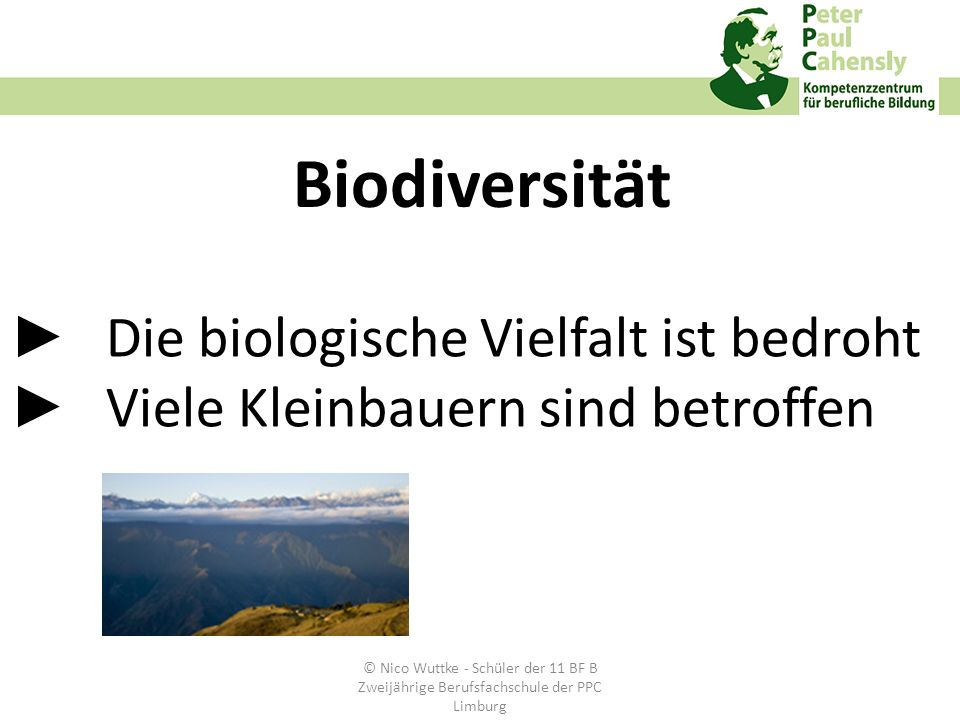 ►. Die biologische Vielfalt ist bedroht ►