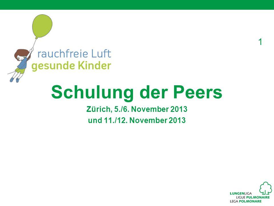 Schulung der Peers Zürich, 5./6. November 2013