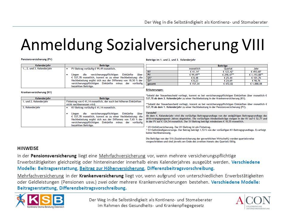 Anmeldung Sozialversicherung VIII