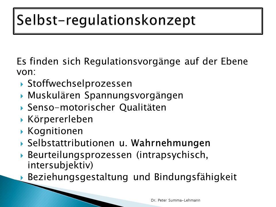 Selbst-regulationskonzept