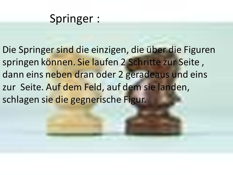 Springer :