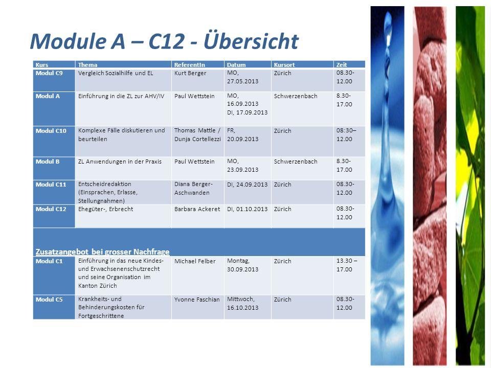 Module A – C12 - Übersicht Zusatzangebot bei grosser Nachfrage Kurs